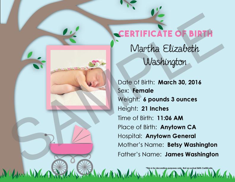 Birth Certificate Ordering Mothers Worksheet Online Babys